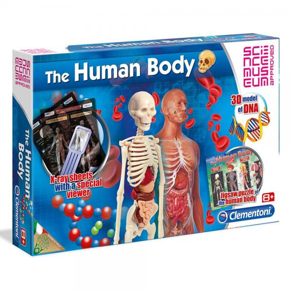 CLEMENTONI Комплект THE HUMAN BODY SCIENCE PLAY 61281